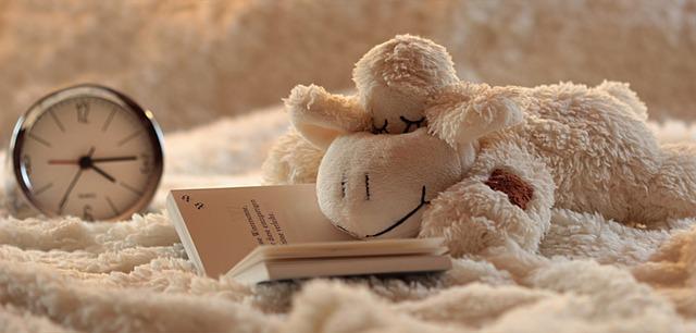 ovečka na knize.jpg